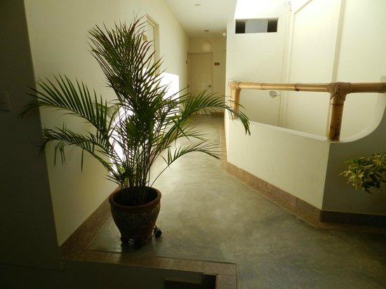 An'Anasha Hotel : Pasillo / Hallway