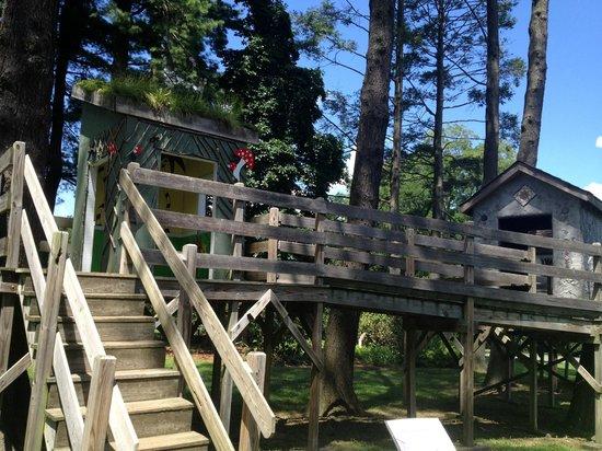Tyler Arboretum: The tree houses