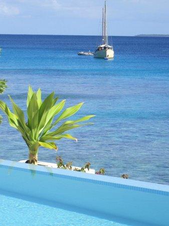 Villa 25: tropical waters