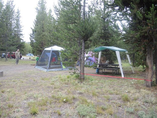 Bridge Bay Campground: Our campsite