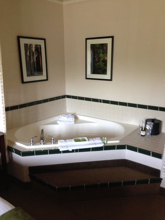 Arcata/Eureka Holiday Inn Express: In Room Jacuzzi