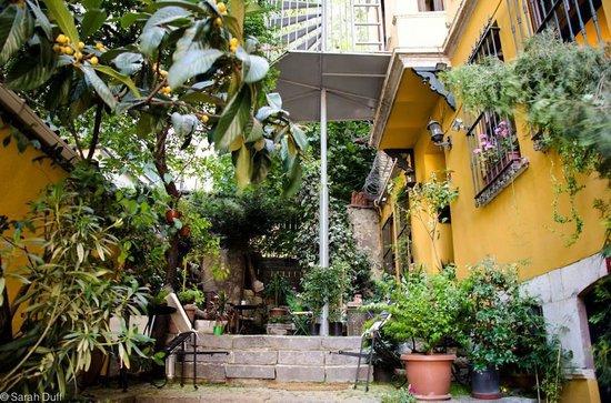 Noble House Galata: Garden