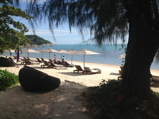 SALA Samui Resort And Spa: The beach