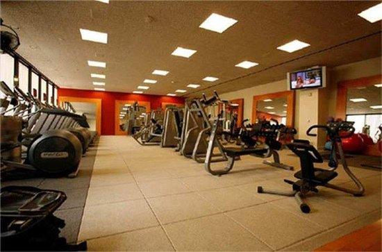 Radisson Hotel JFK Airport: Recreational Facilities