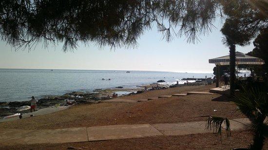 Novigrad, Kroatië: la plage vue du bar