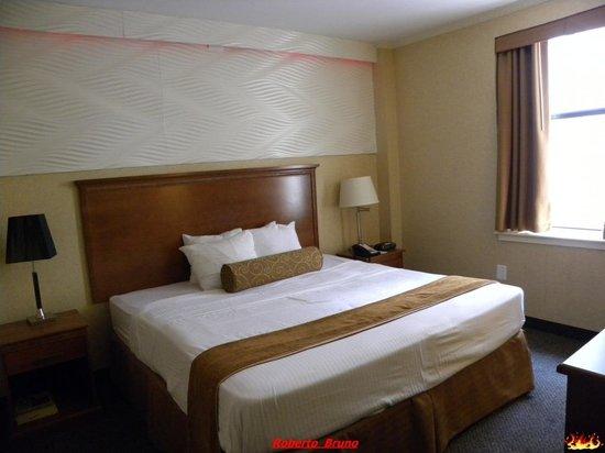 Envy Hotel: Camera