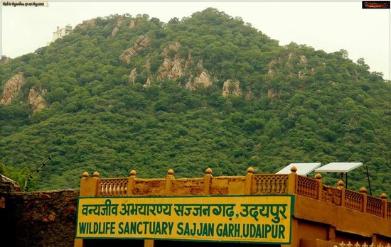 Sajjangarh Wildlife Sanctuary