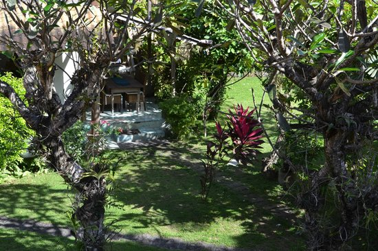 Sanur Bed & Breakfast: garden