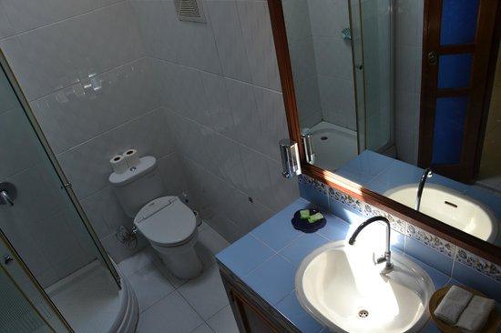 Sanur Bed & Breakfast: bathroom