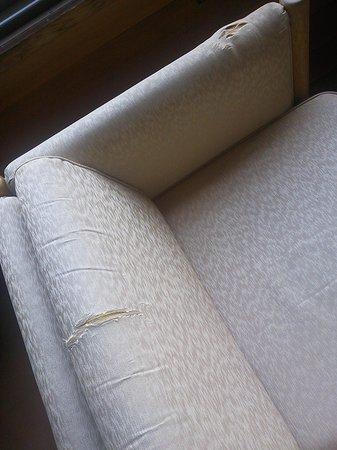 Gyokusen : 破れたソファー