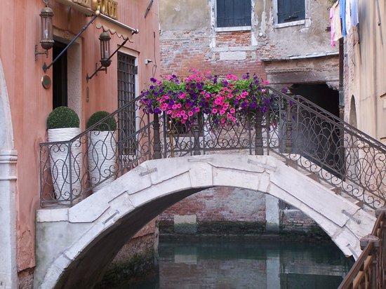 Tour Leader Venice: Beautiful City