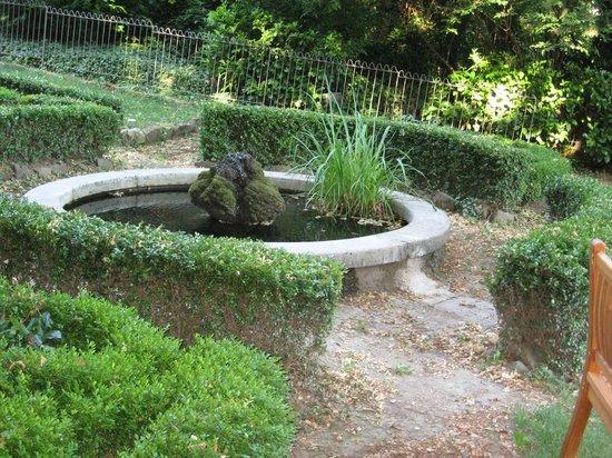 Maison d'Hôtes du Greillon : Garden