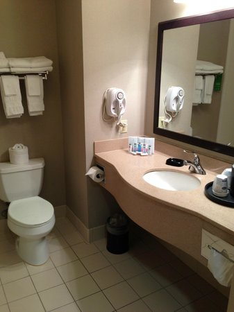 Hampton Inn Bloomsburg : Bathroom