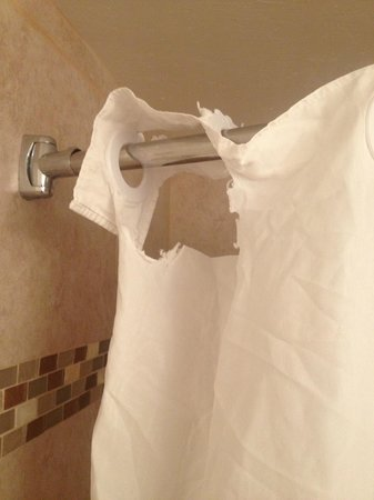 Hotel Tempe/Phoenix Airport InnSuites Hotel & Suites: Torn and seeemingly un-replacebale shower curtain