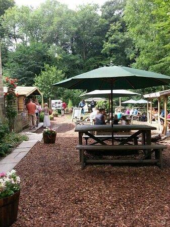 Falling Foss Tea Garden and Waterfall: tea garden