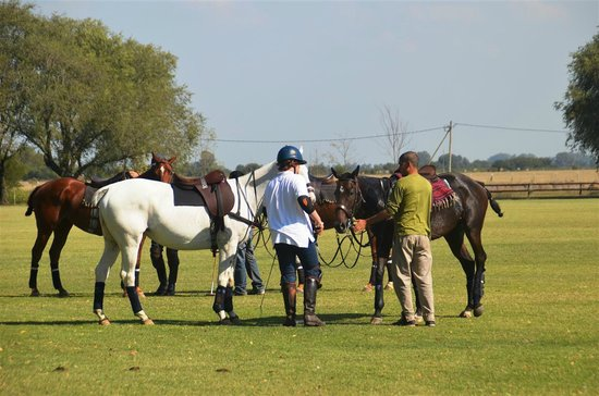 La Guardia Polo Club