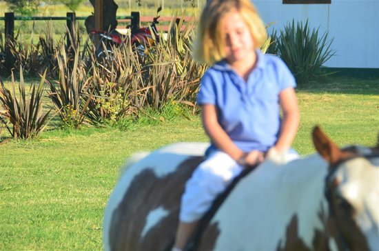 La Guardia Polo Club: Little ones will also enjoy the stay and learn their first steps in Polo