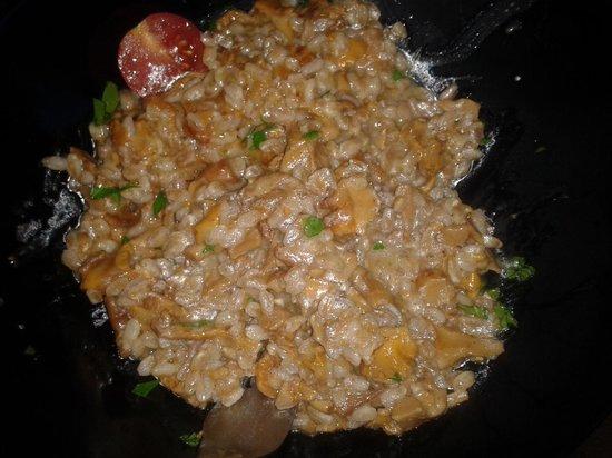Il Punto Vegetariano: faffotto con i finferli