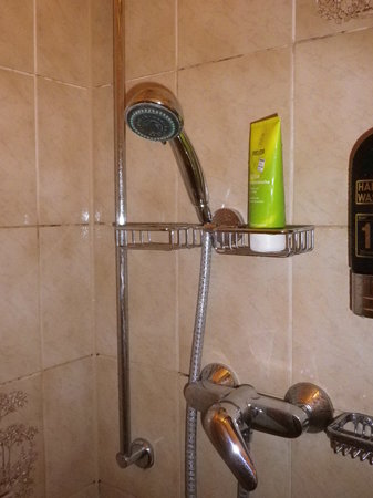 Westernacher Hotel: Duschbefestigung im Bad