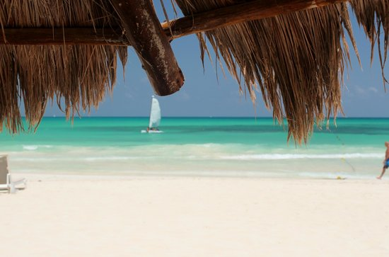 Iberostar Grand Hotel Paraiso : On the beach