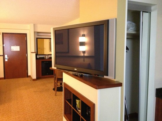 Hyatt Place Chicago/Schaumburg : Large TV - best feature of Room/Suite