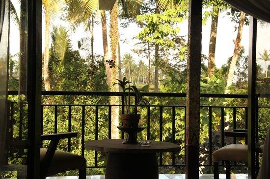 Mulawarman Ubud Bali : View