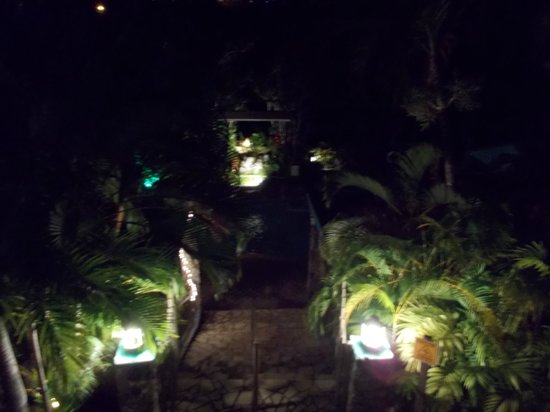 Lazy Parrot Inn: Midnight view from the top to the pool