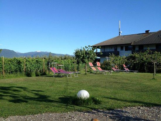 Hotel Weingarten: giardino