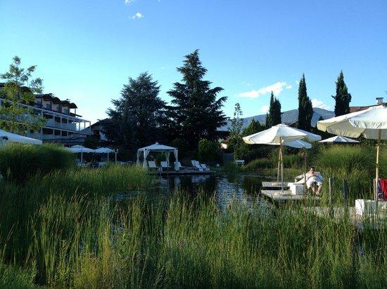 Hotel Weingarten: laghetto esterno