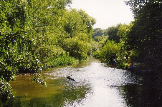 view to the River Gade - Picture of Cassiobury Park, Watford ...