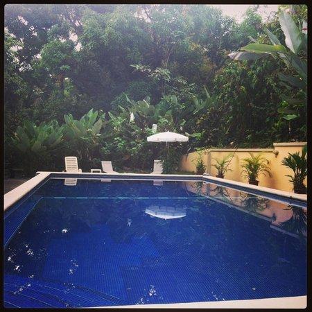 Pete's Place Manuel Antonio: Private pool