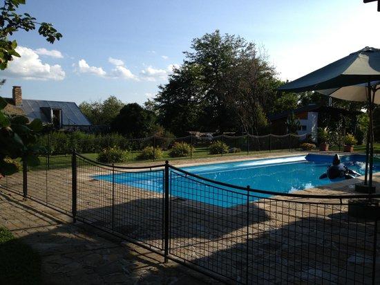 Kali Art Inn: The pool