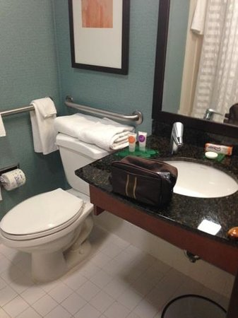 Hyatt Place Atlanta/Alpharetta/North Point Mall: bathroom