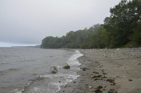 High Tide Inn: The beach