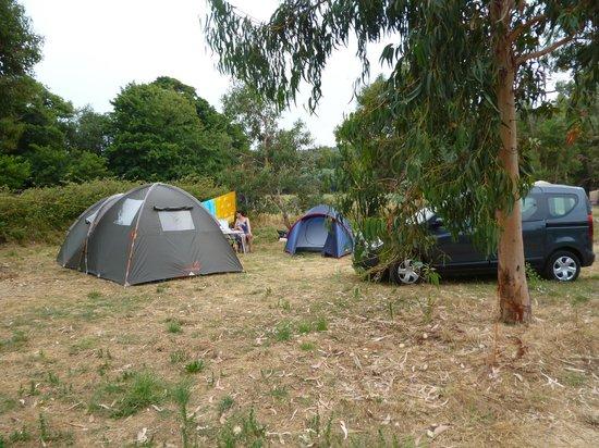 Camping Village l'Ostriconi: un des emplacements ...