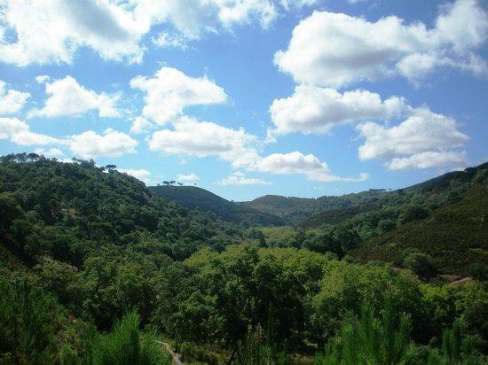 Tapada Nacional de Mafra: unspoiled scenery