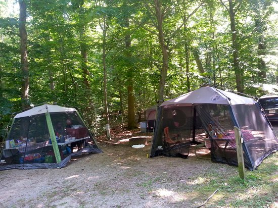 Pohick Bay Regional Park Campgrounds : Two combined sites (we camped with friends)