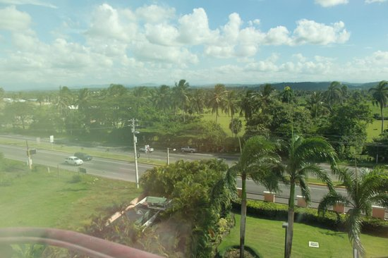 Hodelpa Garden Court: View from the room