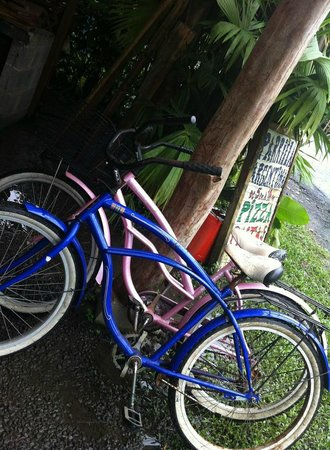 Caribe Town : The bikes we rented