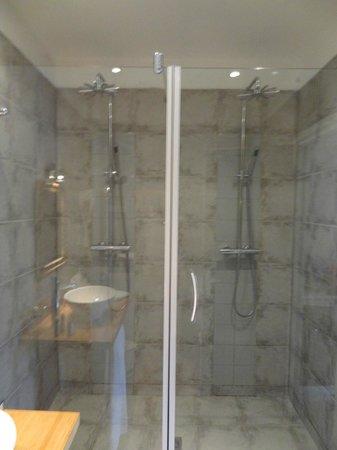 Le Relais Des Chartreuses: la double douche