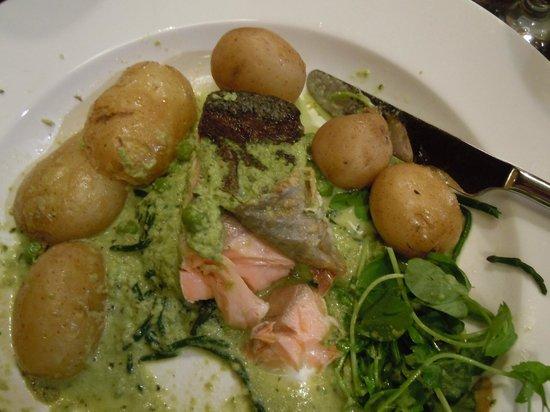 Bingley's Bistro: Salmon main
