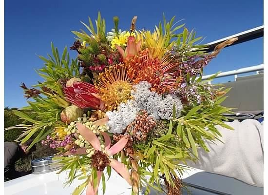 Grootbos Private Nature Reserve: bouquet of protea