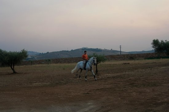 Quinta Entre Rios: horse ridding