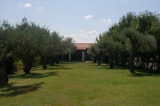 Quinta Entre Rios: gardens