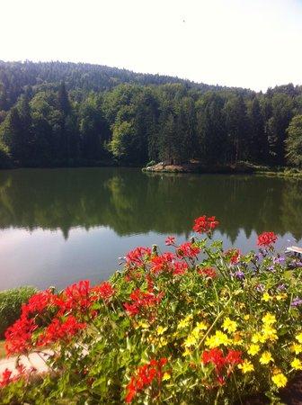 Landgasthof Trattnig: Vista verso ovest del lago