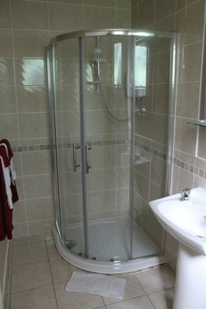 Castleview House B&B : Ensuite was beautiful (Room 4)