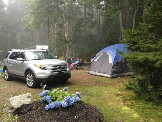 Gray Homestead Camping: Our pretty little site