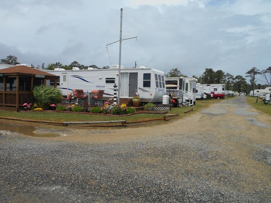 Gwynn's Island RV Resort and Campground: Beautiful RV sites throughout the resort