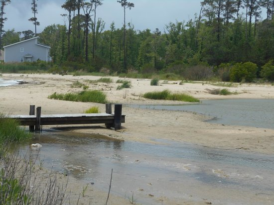 Gwynn's Island RV Resort and Campground: Low tide means more places to explore with the kids