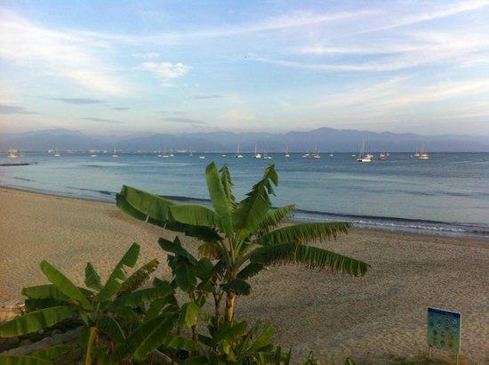 Villa Amor del Mar: The view